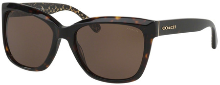 Coach Sunglasses 8230 Tort, Brown Lenses