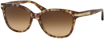 Coach Sunglasses 8132 Light Tort, Brown Gradient Lenses