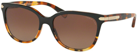 Coach Sunglasses 8132 Black Tort, Brown Gradient Polarised Lenses