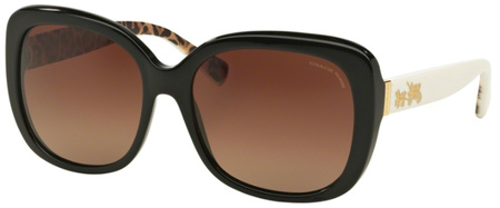 Coach Sunglasses 8158 Black Ivory Wild Beast, Brown Gradient Polarised
